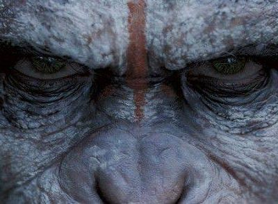 Dawn of the Planet of the Apes Review   Anne Brodie